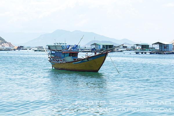 Hướng dẫn đi du lịch đảo Bình Ba giá rẻ